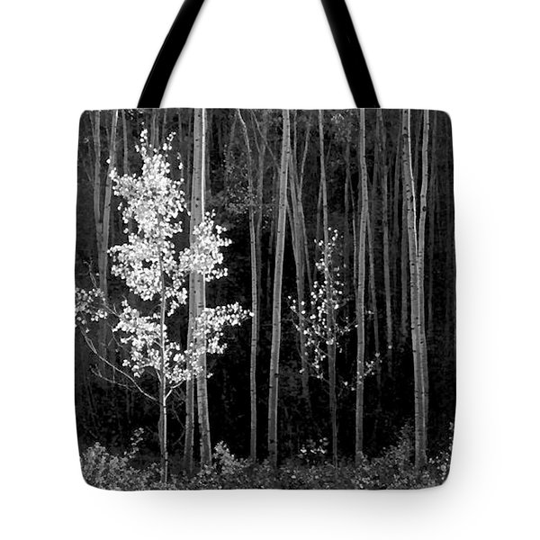 Aspens Northern New Mexico Tote Bag