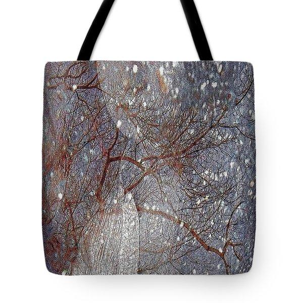 Asphalt - Portrait Of A Lady Tote Bag