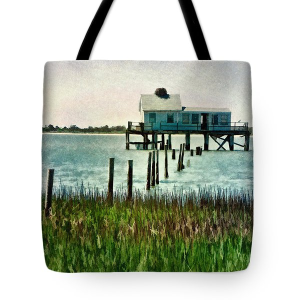 Assateague Abandon Tote Bag