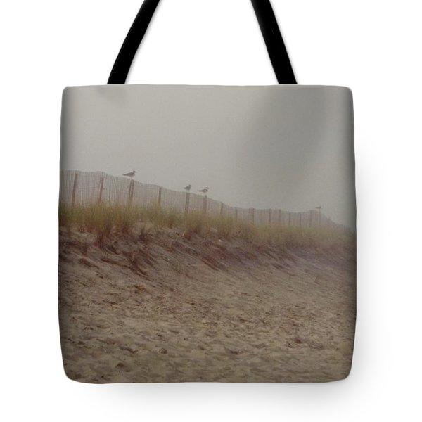 Assateague Dunes Tote Bag by Joann Renner