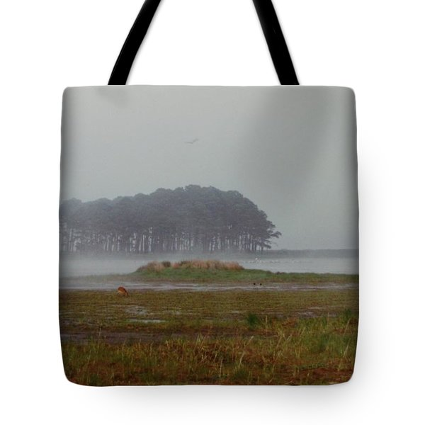 Assateague Fog Tote Bag by Joann Renner