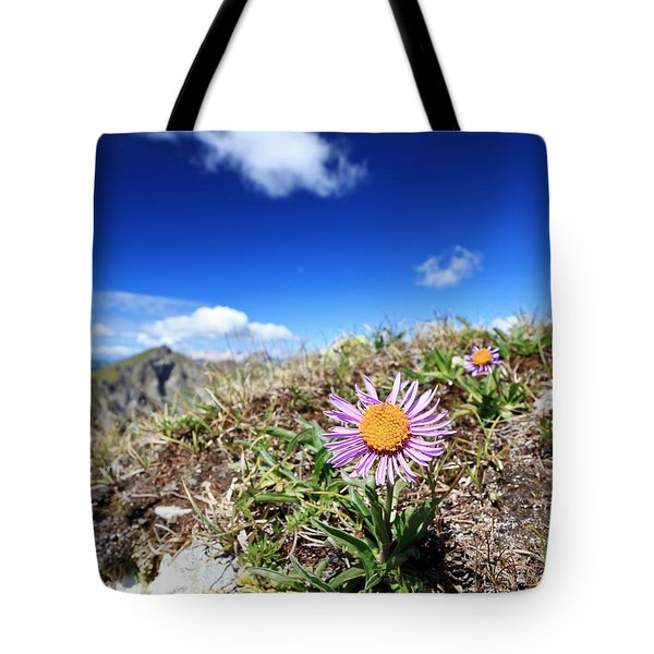Aster Alpinus Tote Bag by Antonio Scarpi