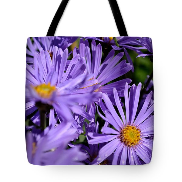 Tote Bag featuring the photograph Asters After The Rain by Scott Lyons