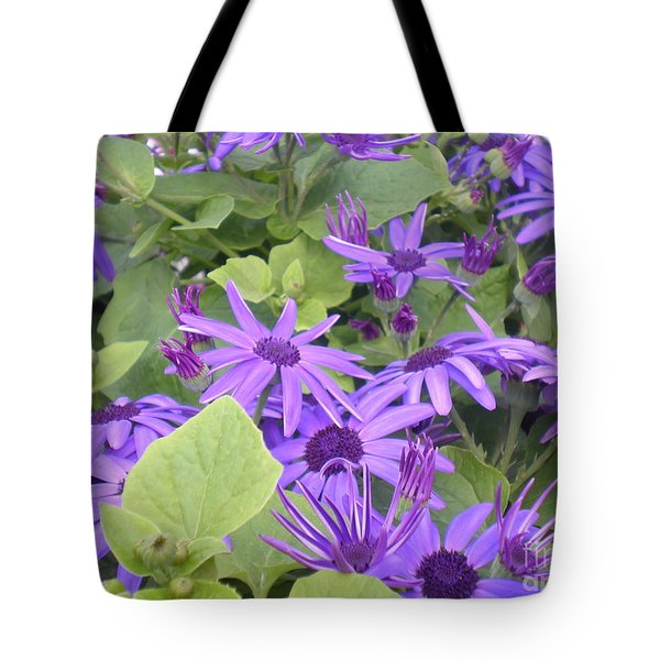 Asters Tote Bag by Kim Prowse