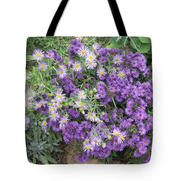 Asters Light And Dark Tote Bag