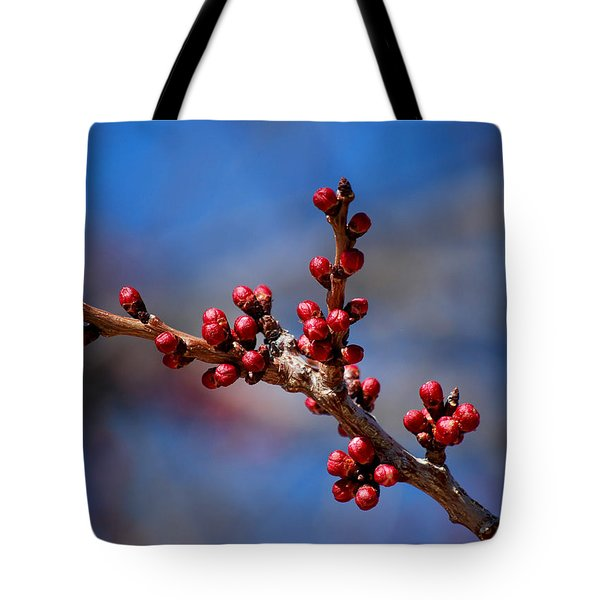 #asthedaysbecamelonger Tote Bag by Becky Furgason