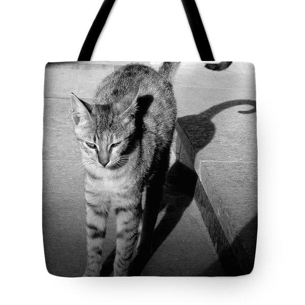 Aswan Cat Tote Bag