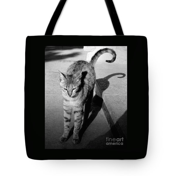 Aswan Cat Tote Bag