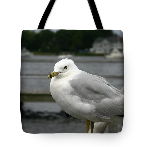 Tote Bag featuring the photograph At The Boat Landing by Denyse Duhaime