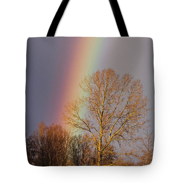 At The End Of The Rainbow Tote Bag