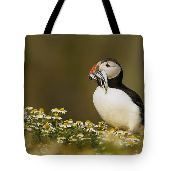 Atlantic Puffin Carrying Fish Skomer Tote Bag