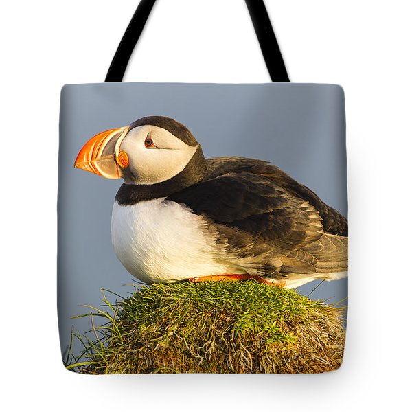 Tote Bag featuring the photograph Atlantic Puffin Iceland by Peer von Wahl
