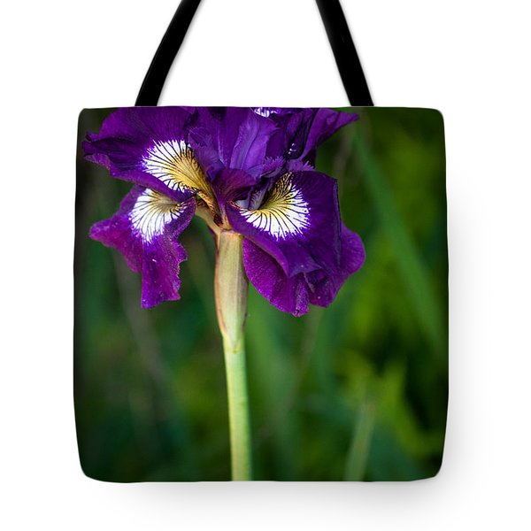 Tote Bag featuring the photograph Attention by Penny Lisowski