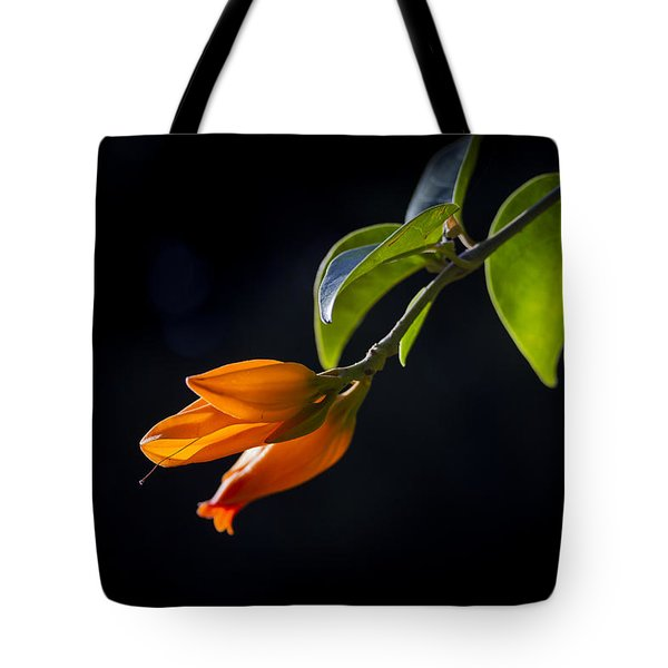 Tote Bag featuring the photograph Attention Seeker by Windy Corduroy