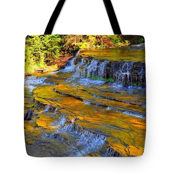 Au Train Falls Tote Bag by Terri Gostola