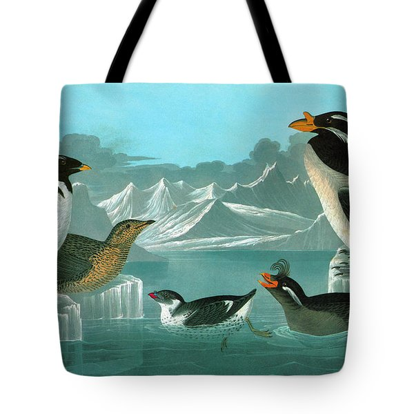 Audubon Auks Tote Bag