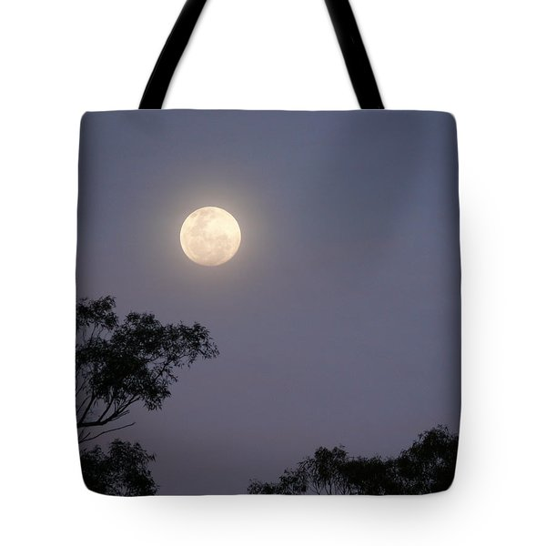 Tote Bag featuring the photograph August Moon by Evelyn Tambour