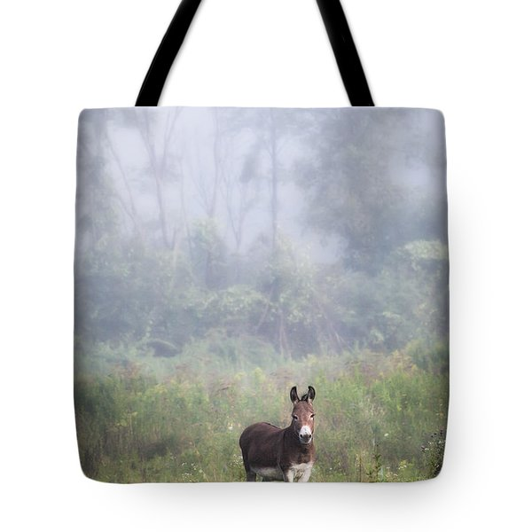 Tote Bag featuring the photograph August Morning - Donkey In The Field. by Gary Heller