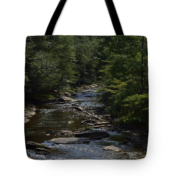 August On Gandy Tote Bag by Randy Bodkins