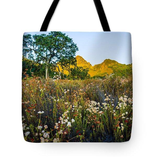August Sunrise In Malibu Creek State Park Tote Bag
