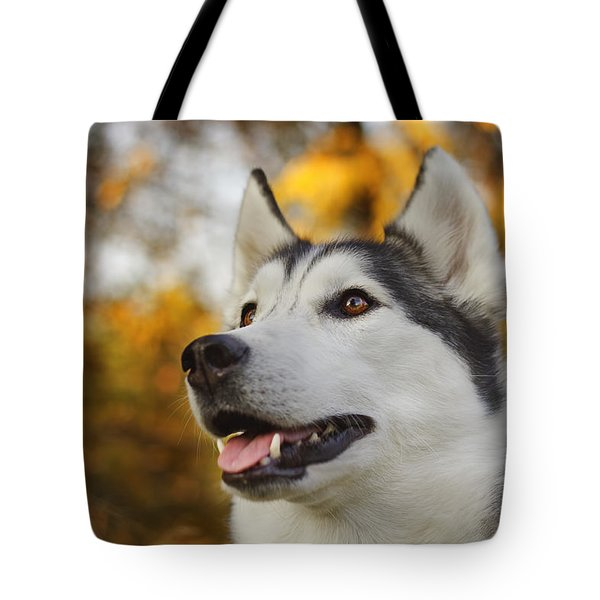 Tote Bag featuring the photograph Aurora by Brian Cross