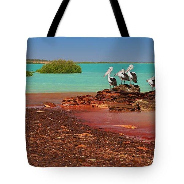 Australian Pelicans Roebuck Bay Tote Bag