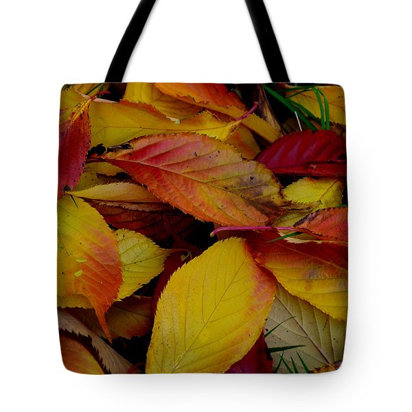 Tote Bag featuring the photograph Autum by Barbara Walsh