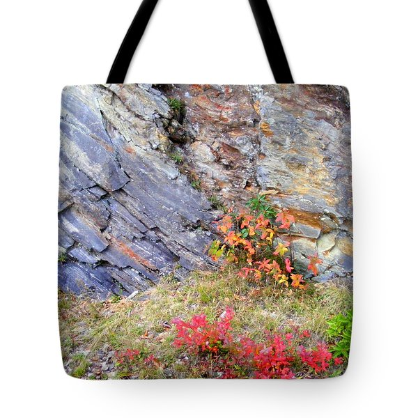 Autumn And Rocks Tote Bag