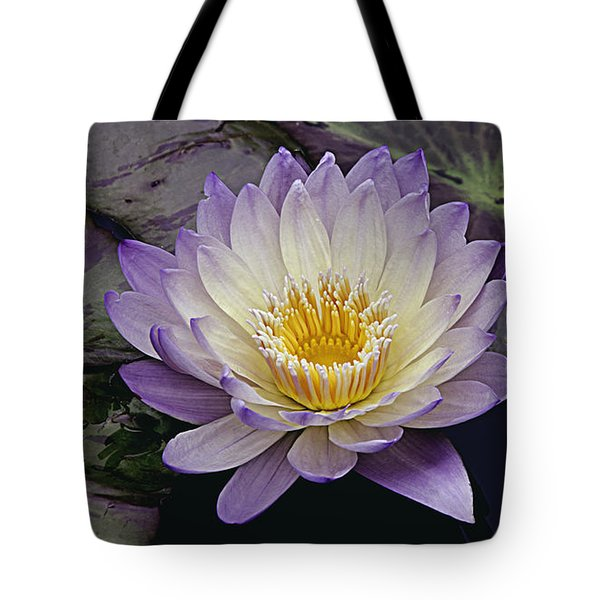 Autumn Aquatic Bloom Tote Bag by Julie Palencia