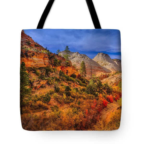 Autumn Arroyo Tote Bag