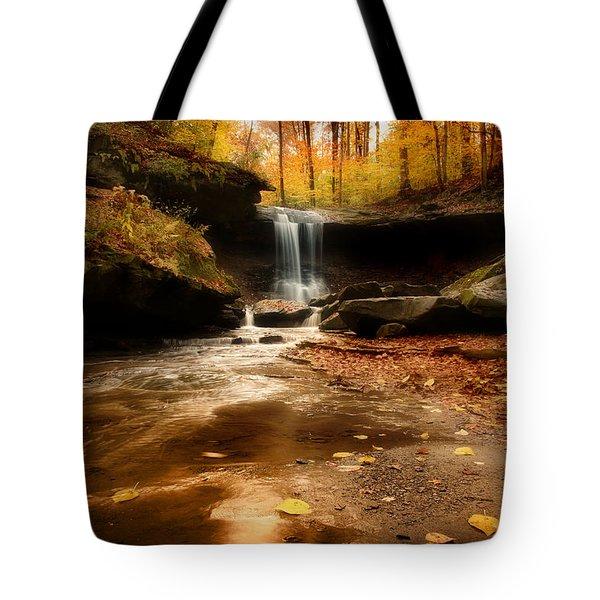 Autumn At Blue Hen Falls Tote Bag