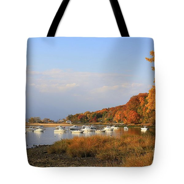 Autumn At Cold Spring Harbor Tote Bag by Dora Sofia Caputo Photographic Art and Design