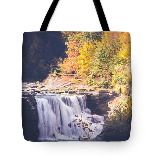 Autumn At Letchworth Tote Bag