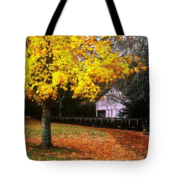 Tote Bag featuring the photograph Autumn At Old Mill by Rodney Lee Williams