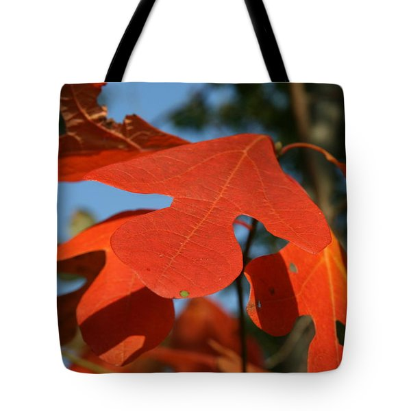 Autumn Attention Tote Bag by Neal Eslinger