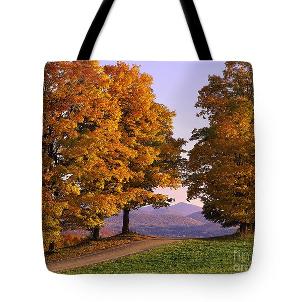 Autumn Backroad View Tote Bag by Alan L Graham