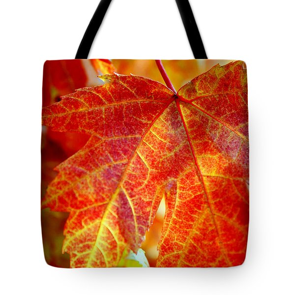 Autumn Blaze Tote Bag