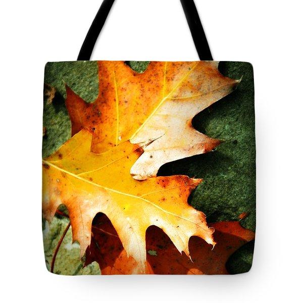 Autumn Blaze Tote Bag by JAMART Photography