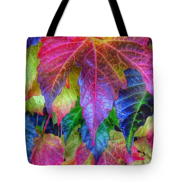 Autumn Bold Tote Bag by Susan Garren