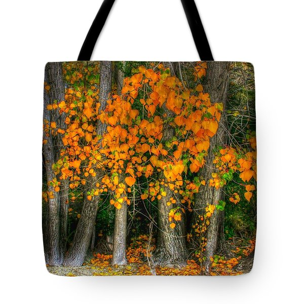 Autumn Breakout No.2 Tote Bag