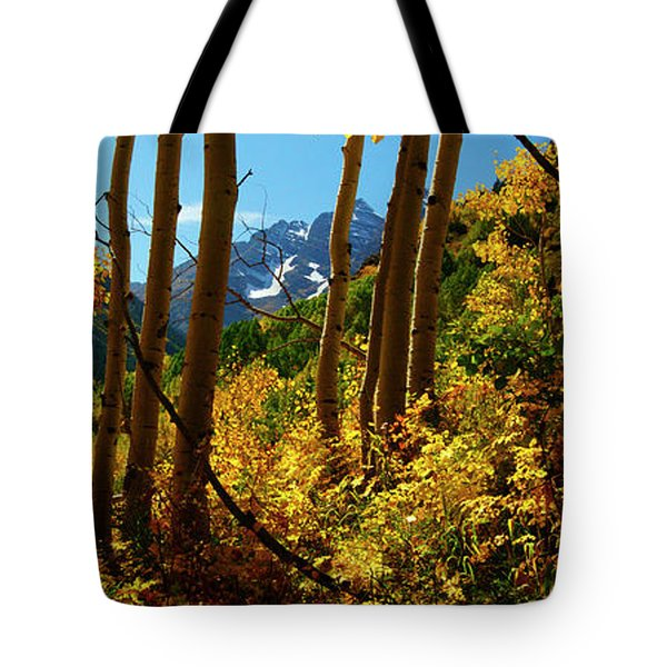 Autumn Brilliance 2 Tote Bag