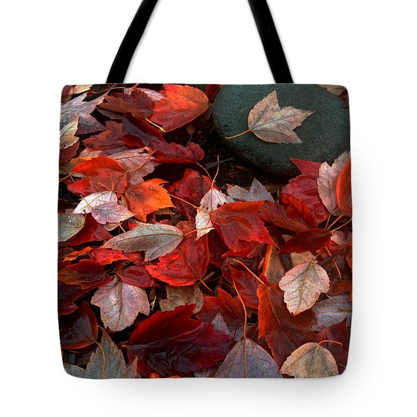 Autumn Broadcast Tote Bag by Gwyn Newcombe