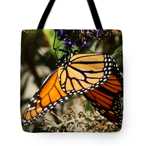 Autumn Butterfly Tote Bag