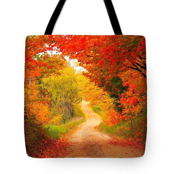 Tote Bag featuring the photograph Autumn Cameo Road by Terri Gostola