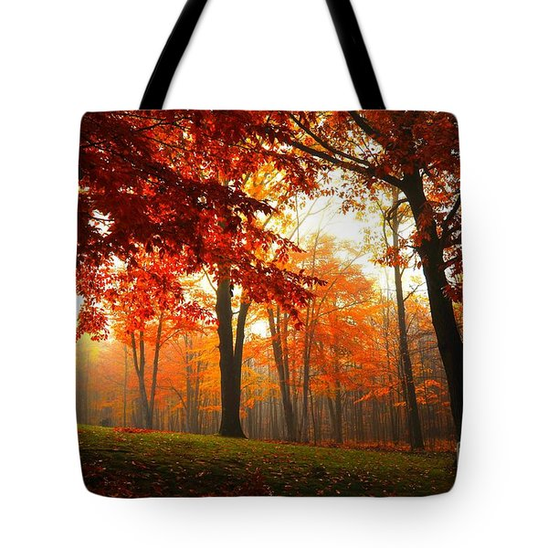 Autumn Canopy Tote Bag by Terri Gostola