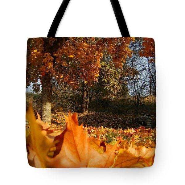 Autumn Carpet Tote Bag