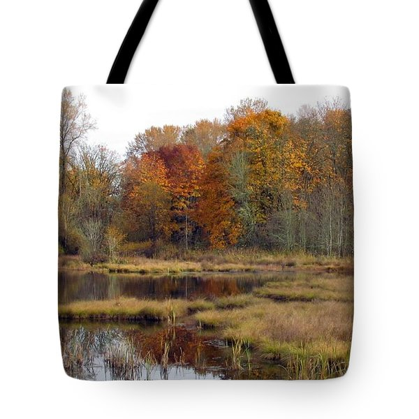 Autumn Changes  Tote Bag
