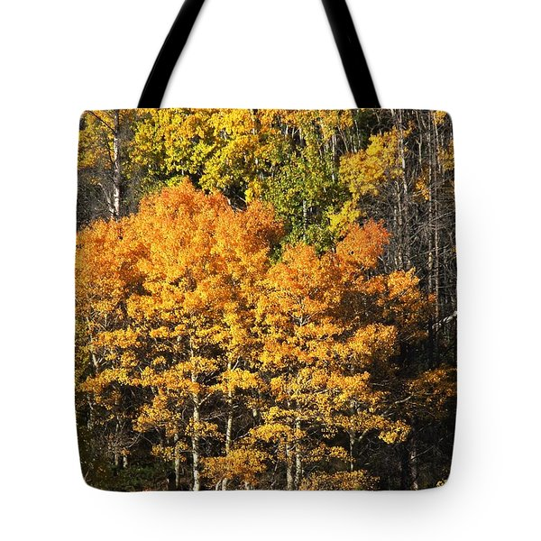 Autumn Color At The Continental Divide Tote Bag by Kae Cheatham