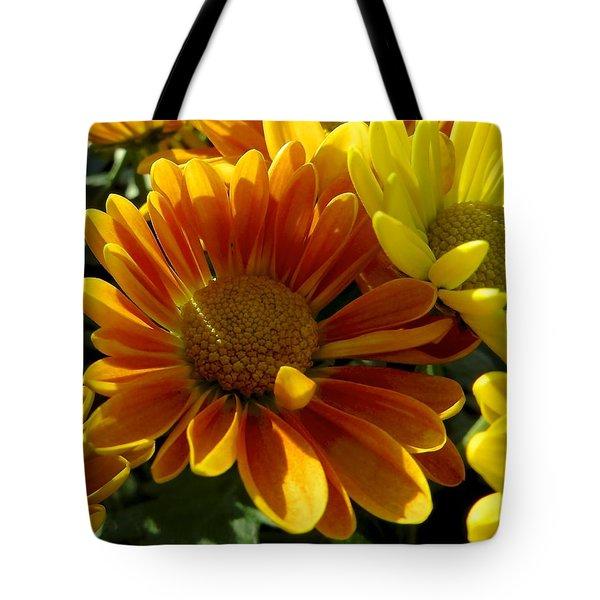Autumn Color Tote Bag by Rita Mueller