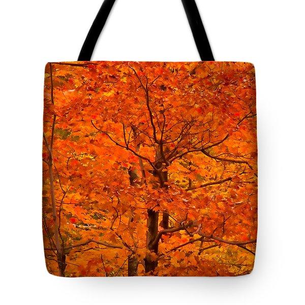 Autumn Color Splash Tote Bag